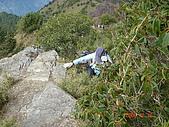 2005.12.10郡大山:DSC01907.JPG