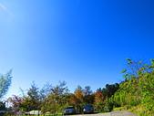 2015.12.19嘉義大凍山國家森林步道:IMG_3515.JPG