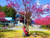 2021.02.15九族文化村:IMG_4915.JPG