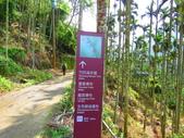 2015.10.24嘉義瑞峰竹坑溪步道:IMG_2406.JPG