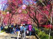 2021.02.15九族文化村:IMG_4921.JPG