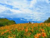 2015.08.15花蓮六十石山:IMG_1653.JPG