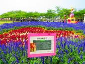 2020.03.21台南學甲老塘湖藝術村:IMG_3387.JPG