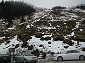 2011.02.18櫻花密境-武陵農場:DSCF0769.JPG