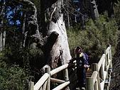 2007.05.10玉山北峰:DSC00292.JPG