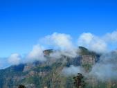 2018.12.15阿里山對高岳步道:IMG_0567.JPG