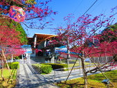 2021.02.15九族文化村:IMG_4754.JPG