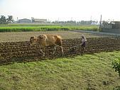 2008.10.10騎到大鵬灣:DSC01823.JPG