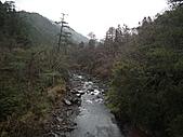 2011.02.18櫻花密境-武陵農場:DSCF0946.JPG