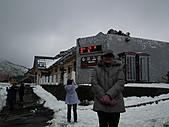 2011.02.18櫻花密境-武陵農場:DSCF0772.JPG