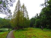 2015.10.11宜蘭福山植物園:IMG_2338.JPG