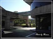 悠遊新竹:立益球場