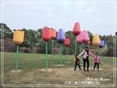 悠遊台南:德元埤荷蘭村 2020