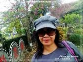 悠遊台東:布農部落 2018