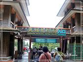 悠遊南投:九族文化村