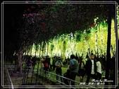 悠遊屏東:屏東公園 2019