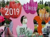悠遊台北:士林官邸鬱金香展 2019
