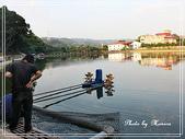 悠遊新竹:坪林水塘