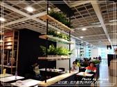 悠遊高雄:校外教學(IKEA) 2018
