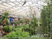 悠遊雲林:蘿莎玫瑰莊園 2015