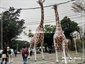悠遊台中:鐵砧山風景區 2019