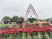 悠遊台中:中社觀光花市 2021