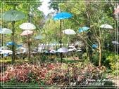 悠遊南投:台一生態休閒農場 2019