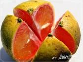 悠遊新竹:採橘