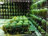 悠遊南投:埔里酒廠 2019