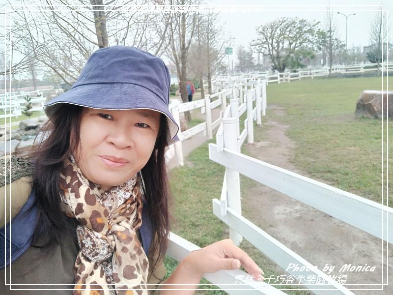 悠遊雲林:千巧谷牛樂園牧場 2019