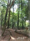 悠遊南投:南投。下坪熱帶植物園