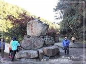 悠遊南投:杉林溪森林遊樂區 2020