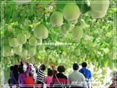 悠遊屏東:熱帶農業博覽會 2018