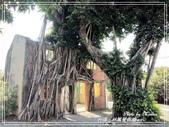 悠遊台南:林鳳營樹屋 2021